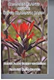 img - for Common Plants of the Upper Klamath Basin book / textbook / text book