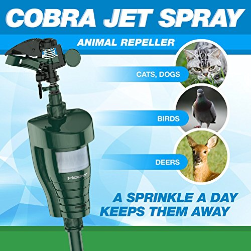 Hoont8482; Cobra Powerful Outdoor Water Jet Blaster Animal Pest Repeller - Motion Activated - Blasts Cats, Dogs, Squirrels, Birds, Deer, Etc. Out of Your Property (Rat Whistle compare prices)