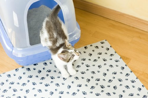 DRYMATE CLMG2028P GREY MAT CAT LITTER BOX PAW IMPRINT