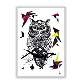The Guardian Of The Night Owl Designer Poster For Room Poster By PosterGuy