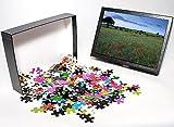 Photo Jigsaw Puzzle of Summer twilight i...