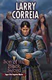 img - for Son of the Black Sword (Saga of the Forgotten Warrior) book / textbook / text book