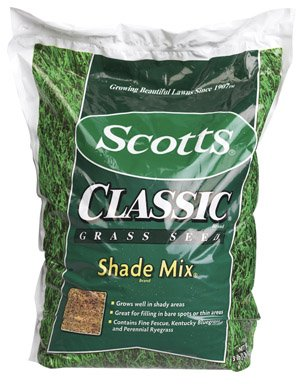 Scotts patch master lawn repair