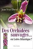 echange, troc David - Des Orchidees Sauvages...en Loire Atlantique?