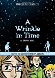 img - for A Wrinkle in Time: The Graphic Novel book / textbook / text book