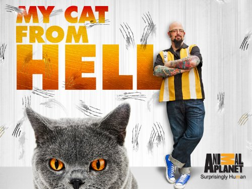 My Cat From Hell Season 4