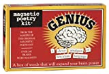 Genius-Magnetic Poetry Kit