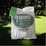 1 Kg Shaded Area Lawn Grass Seed Cove...