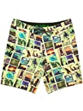 HippyTree Boardshort Transfer Trunk 100% recycled, Boardshorts Grösse:30/1