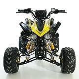 Aufgebautes Kinder Quad ATV 125 ccm ohne Straßenzulassung 5 versch.