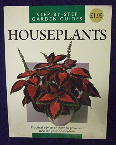 houseplants-practical-advice-on-how-to-grow-and-care-for-your-houseplants