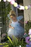 Girls Costumes Butterfly Fairy Princess Dress Up Birthday Girl Dresses Halloween Costumes -- Blue