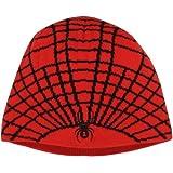 Spyder Boy's Web Hat