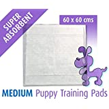 100 Puppy Training Pads Size 60x60 cm Tendercare Mats