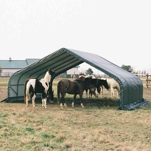ShelterLogic 22 x 24 x 12-Feet Peak Style Run-In Shelter, Green Cover, Outdoor Stuffs