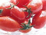 フルーツミニトマト『アイコ』 2kg 北海道産♪糖度8度以上※収穫出来次第、順次発送となります。