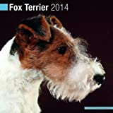 Avonside Publishing Fox Terrier 2014 (Calendar 2014)