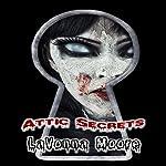 Attic Secrets   LaVonna Moore