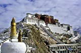 The Potala Palace Lhasa Tibet Poster Art Photo Poster Prints 20x30