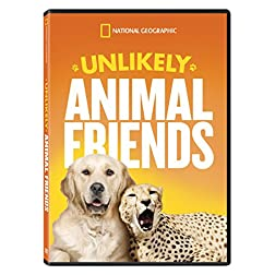 Unlikely Animal Friends Season 1 Repackaged