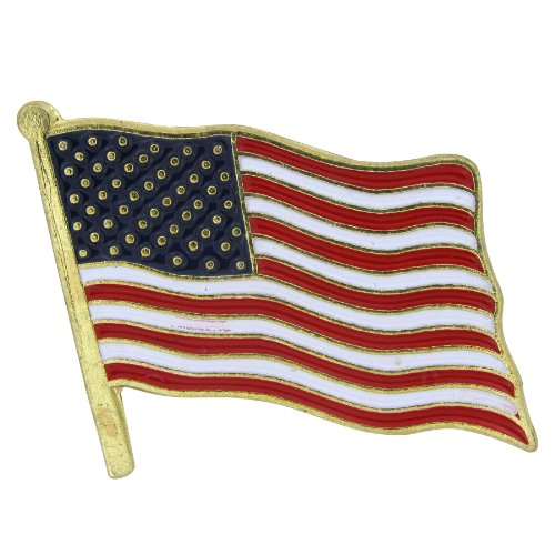 US Flag Store USA Flag Lapel Pin Standard Flag