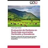 Evaluaci N de Carbono En Suelo Bajo Escenarios Hort Colas y Ganaderos: Pérdida y retención de carbono por erosión...