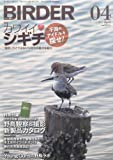 BIRDER (バーダー) 2013年 04月号 干潟のアイドルを探せ! カワイイ・シギチ