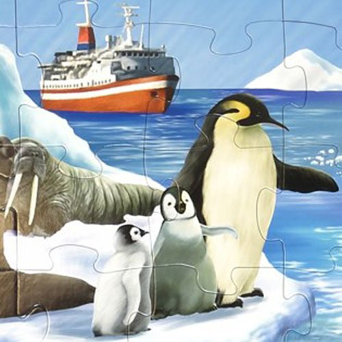 puzzle-in-a-tub-giant-floor-jigsaw-puzzle-antarctica