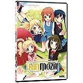 きんいろモザイク: コンプリート・コレクション 北米版 / Kinmoza: Complete Collection [DVD][Import]