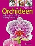Orchideen: Haltung und Pflege leicht gemacht