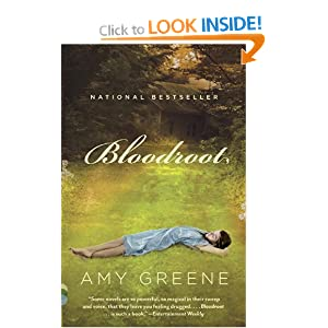 Bloodroot (Vintage Contemporaries) Amy Greene
