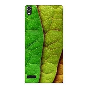 Enticing Leaf Pattern Multicolor Back Case Cover for Ascend P6
