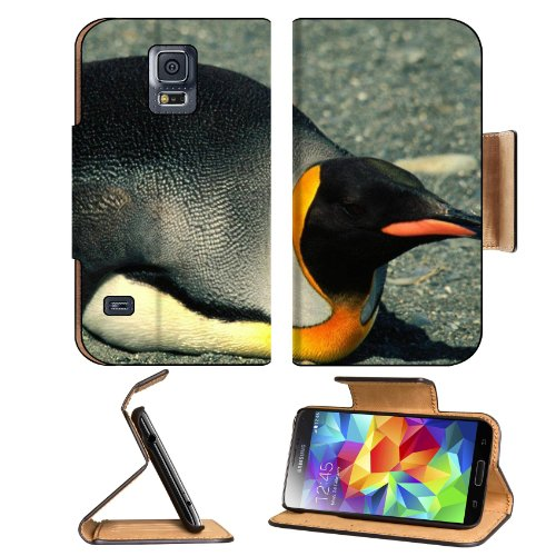 Penguin Laying Belly Nature Birds Samsung Galaxy S5 Sm-G900 Flip Cover Case With Card Holder Customized Made To Order Support Ready Premium Deluxe Pu Leather 5 13/16 Inch (148Mm) X 2 1/8 Inch (80Mm) X 5/8 Inch (16Mm) Msd S V S 5 Professional Cases Accesso