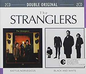 Rattus Norvegicus / Black And White