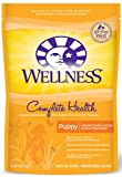 Wellness Complete Health Natural Dry Puppy Food, Chicken, Salmon & Oatmeal, 6-Pound Bag