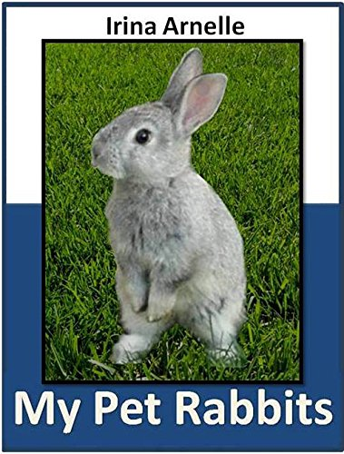 my pet rabbit Written by administrator monday, 31 october 2011 00:00 pet rabbits are easy to look after however, simply because they are easy to look after does not mean that you can spend very little time with them.