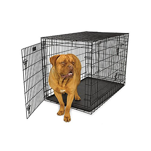 midwest homes for pets three door dog crate with divider panel mediumlarge black by midwest homes for pets