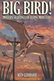 img - for BIG BIRD! - MODERN SIGHTINGS OF FLYING MONSTERS book / textbook / text book