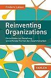 Image de Reinventing Organizations: Ein Leitfaden zur Gestaltung sinnstiftender Formen der Zusammenarbeit