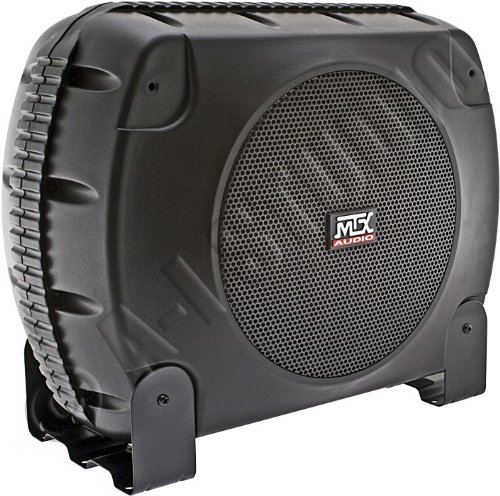 XThunderLink Power System, Single 10-Inch, Powered Subwoofer Enclosure, 135W RMS (Black)