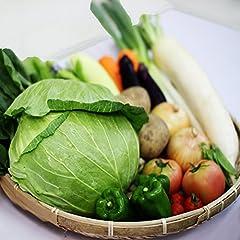 おまかせ野菜詰め合わせセット 20品目付き