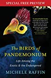 The Birds of Pandemonium: Free Previews - The First 2 Chapters plus Bonus Material