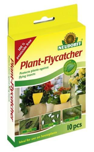 neudorff-cartine-gialle-cattura-insetti-e-parassiti-senza-insetticida-per-la-protezione-delle-piante