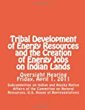 img - for Tribal Development of Energy Resources and the Creation of Energy Jobs on Indian Lands book / textbook / text book