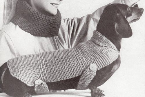 vintage-knitting-pattern-to-make-dog-coat-blanket-sweater-shund-not-a-finished-item-this-is-a-pattern-or-instructions-to-make-the-item-only