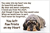 Dachshund Dog Bereavement Pet loss gift - you left Paw Prints on my heart