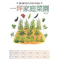 一坪家庭菜園―狭い庭でもここまでできる (単行本) 藤田 智 (著)