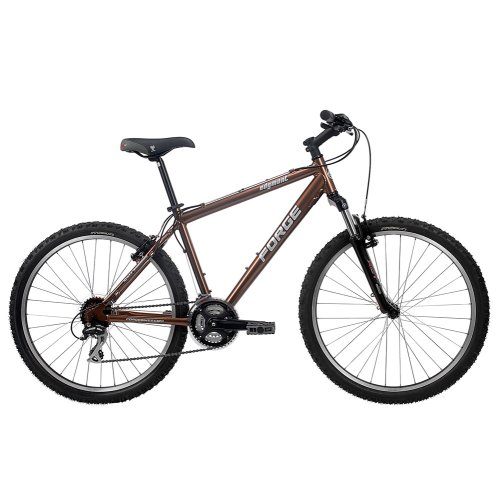 Forge Edgmont Path and Mountain Frame Bike - 175