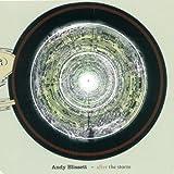 echange, troc Andy Blisset - After the Storm