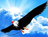 Picture Of <h1>The Mighty Bald Eagle 3d Kite with 6&#8242;- 6&#8243; (78 Inch) Wing Span with Realistic Proportions and Made of Premium Materials</h1>